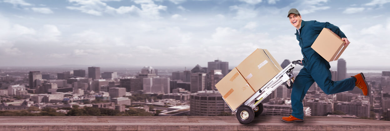 How to Find the Top Courier in Elsternwick